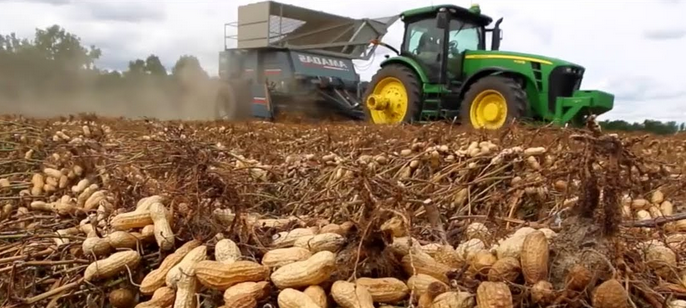 BST 31313 - Harvesting & Processing Technologies of Plantation Crop Products