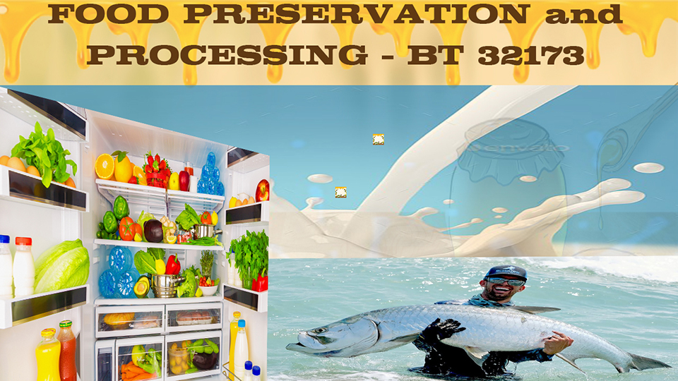BT 32173 - Food Preservation and Processing
